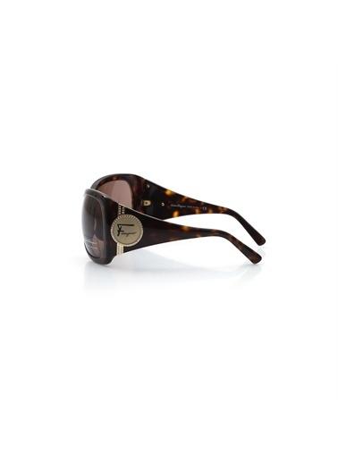 Salvatore Ferragamo Güneş Gözlüğü Kahve